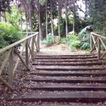 strutture giardino